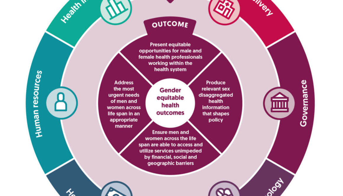 gender in health systems policy diagram